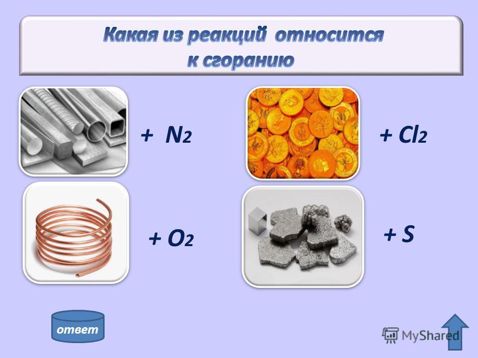 + N 2 + O 2 + Cl 2 + S ответ