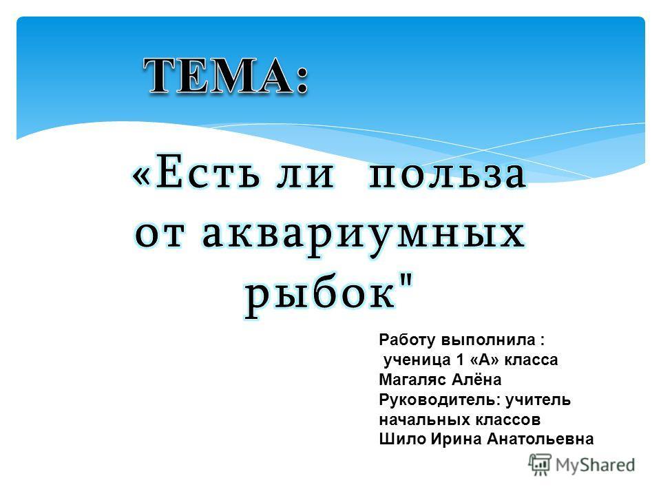 Работу выполнила : ученица 1 «А» класса Магаляс Алёна Руководитель: учитель начальных классов Шило Ирина Анатольевна