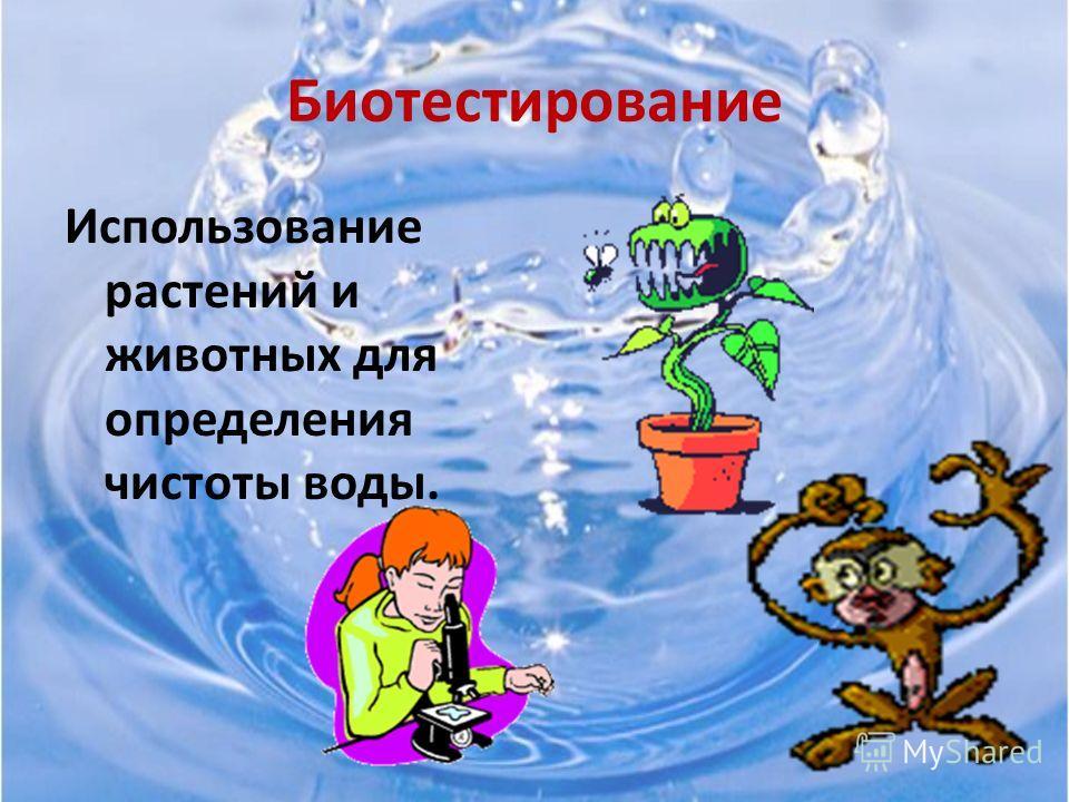 Вывод: вода из водопроводного крана непригодна для использования для питьевых нужд, так как содержит посторонние примеси в отличие от родниковой и привозной воды. В Приморском крае из 77 месторождений подземных вод 59 очагов загрязнено различными хим