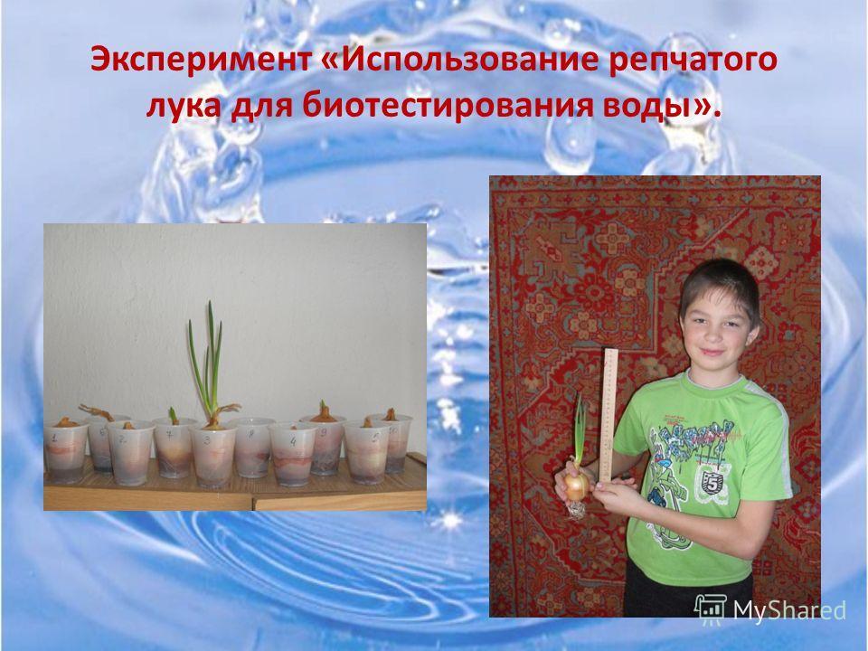 Биотестирование Использование растений и животных для определения чистоты воды.