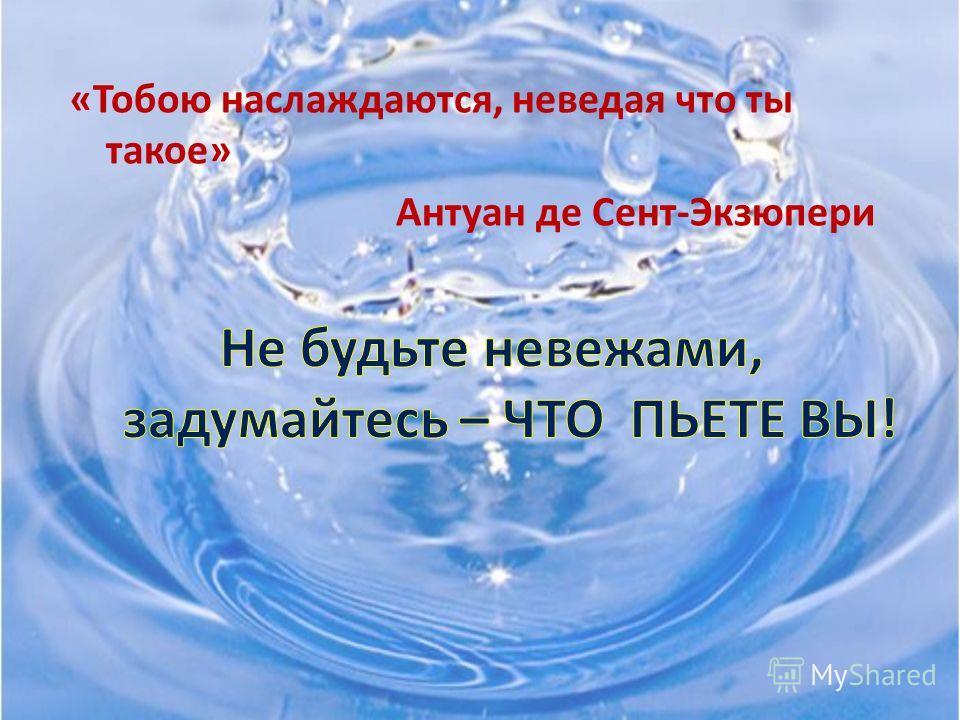 Вода – это богатство, к которому надо относиться бережно и экономно.