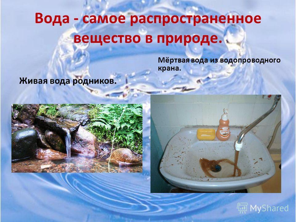 Методы исследования. 1. Эксперимент «Определение цветности воды». 2. Эксперимент «Определение мутности воды». 3. Эксперимент «Использование репчатого лука для биотестирования воды». 4. Эксперимент «Использование семян гороха для биотестирования воды»