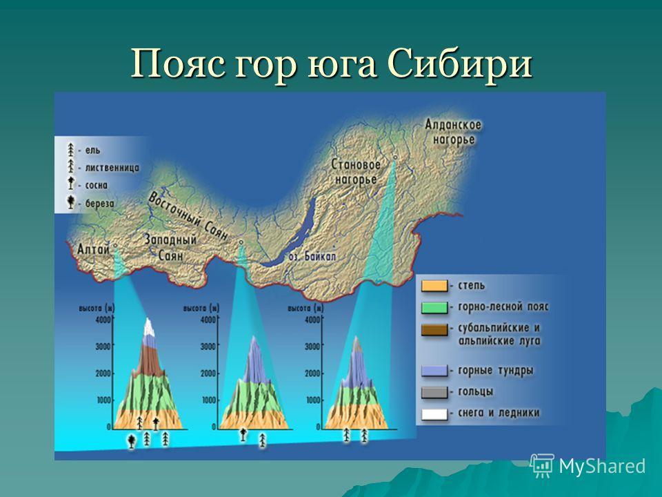 Пояс гор юга Сибири