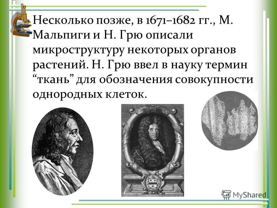 Несколько позже, в 1671–1682 гг., М. Мальпиги и Н. Грю описали микроструктуру некоторых органов растений. Н. Грю ввел в науку термин ткань для обозначения совокупности однородных клеток.