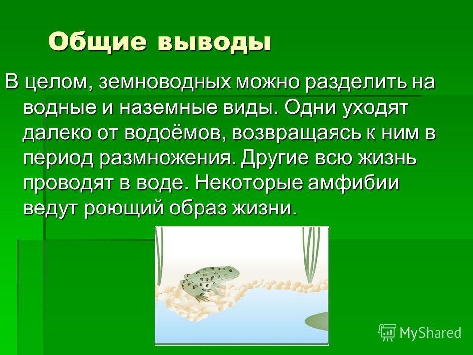 Общие выводы В целом, земноводных можно разделить на водные и наземные виды. Одни уходят далеко от водоёмов, возвращаясь к ним в период размножения. Другие всю жизнь проводят в воде. Некоторые амфибии ведут роющий образ жизни.