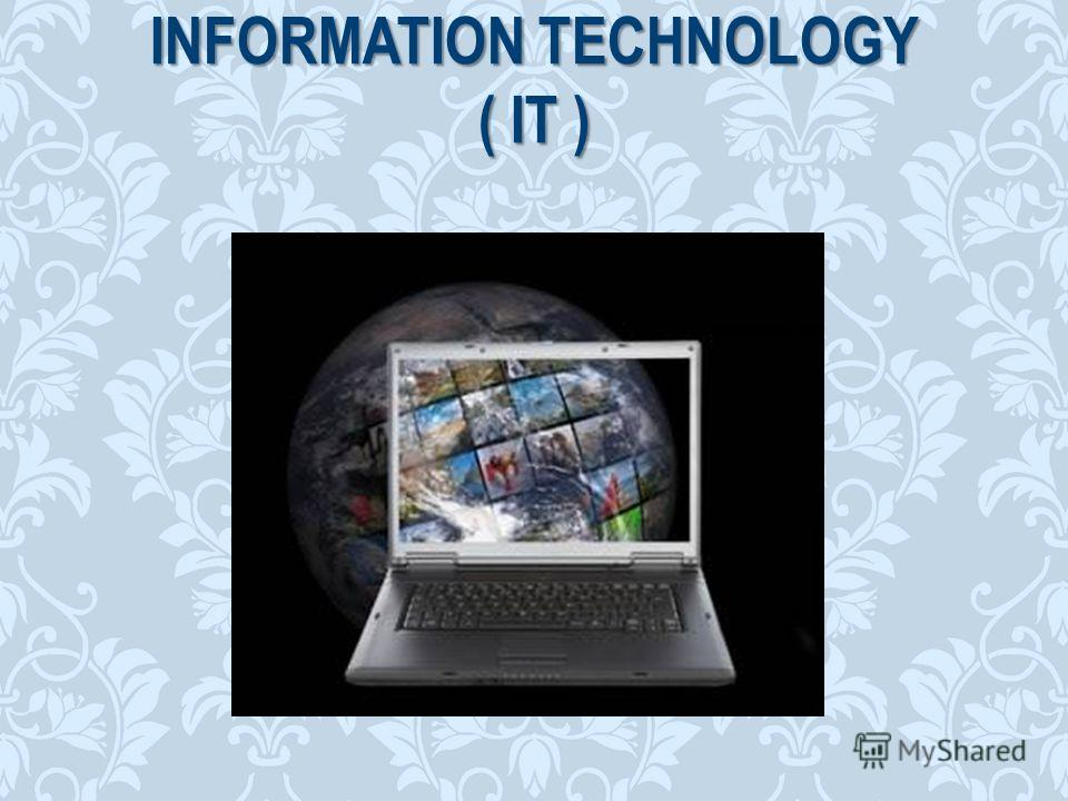 INFORMATION TECHNOLOGY ( IT )
