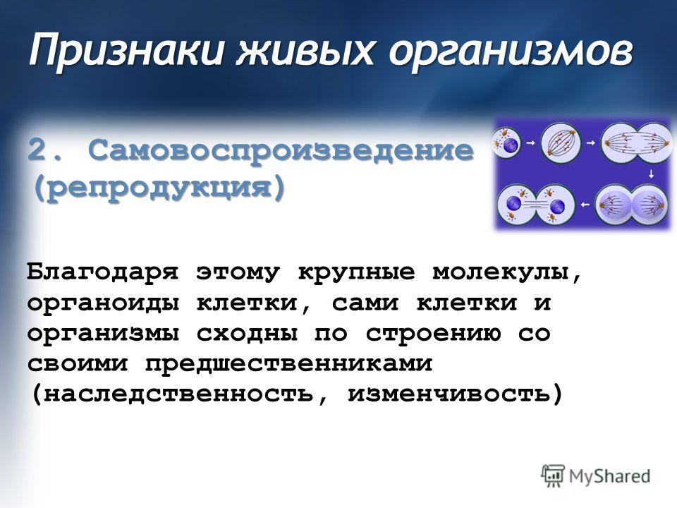 Признаки живых организмов 2. Самовоспроизведение (репродукция) Благодаря этому крупные молекулы, органоиды клетки, сами клетки и организмы сходны по строению со своими предшественниками (наследственность, изменчивость)