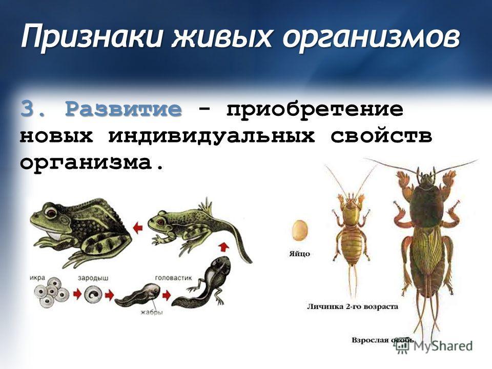 Признаки живых организмов 3. Развитие 3. Развитие - приобретение новых индивидуальных свойств организма.