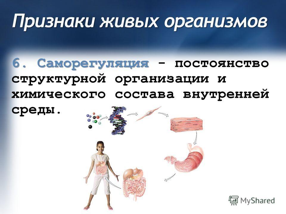 Признаки живых организмов 6. Саморегуляция 6. Саморегуляция - постоянство структурной организации и химического состава внутренней среды.