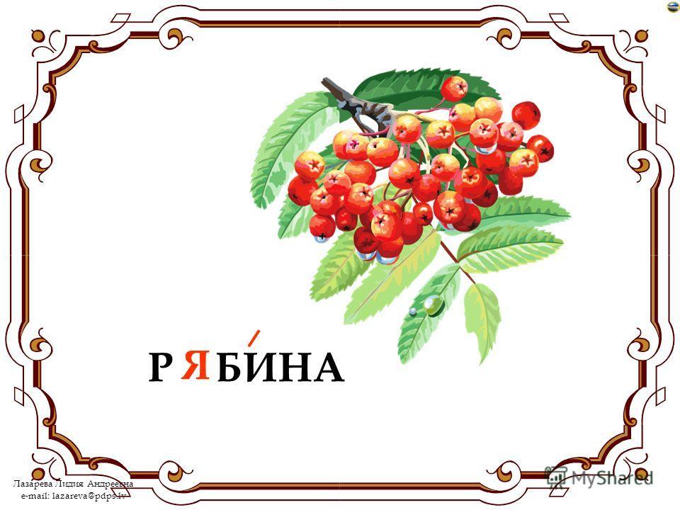 Лазарева Лидия Андреевна e-mail: lazareva@pdps.lv Р…БИНА Я