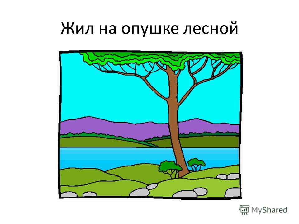 Жил на опушке лесной