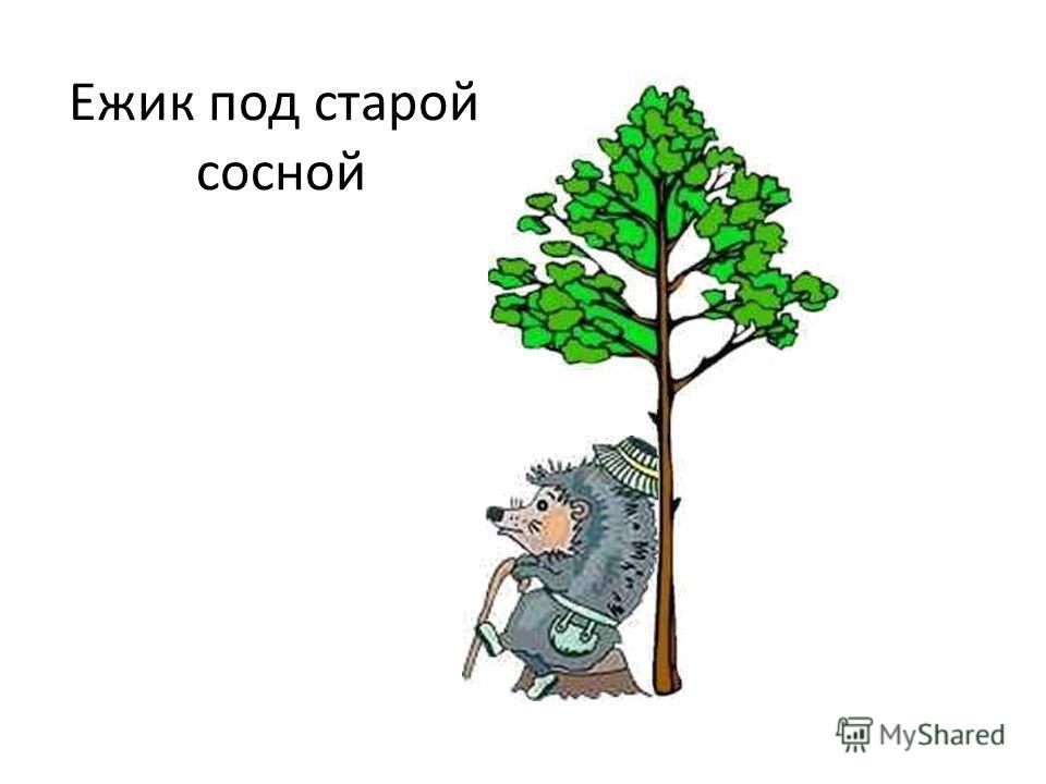Ежик под старой сосной