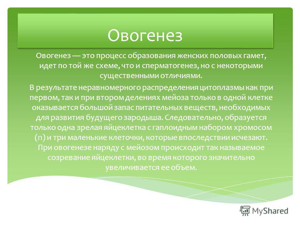 Овогенез Овогенез это процесс образования женских половых гамет, идет по той же схеме, что и сперматогенез, но с некоторыми существенными отличиями. В результате неравномерного распределения цитоплазмы как при первом, так и при втором делениях мейоза