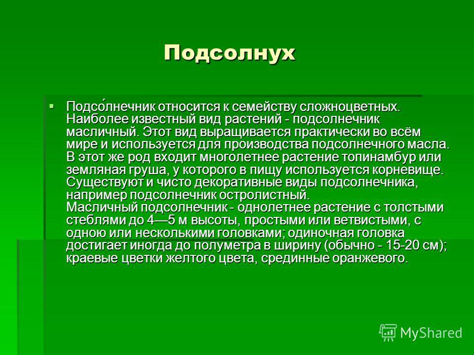 Подсолнух Подсолнух Подсо́лнечник относится к семейству сложноцветных. Наиболее известный вид растений - подсолнечник масличный. Этот вид выращивается практически во всём мире и используется для производства подсолнечного масла. В этот же род входит