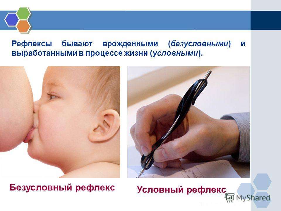 Рефлексы бывают врожденными (безусловными) и выработанными в процессе жизни (условными). Безусловный рефлекс Условный рефлекс