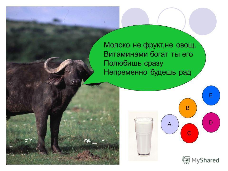 Всё- что вы хотели узнать о молоке но, Стеснялись спросить! молоко