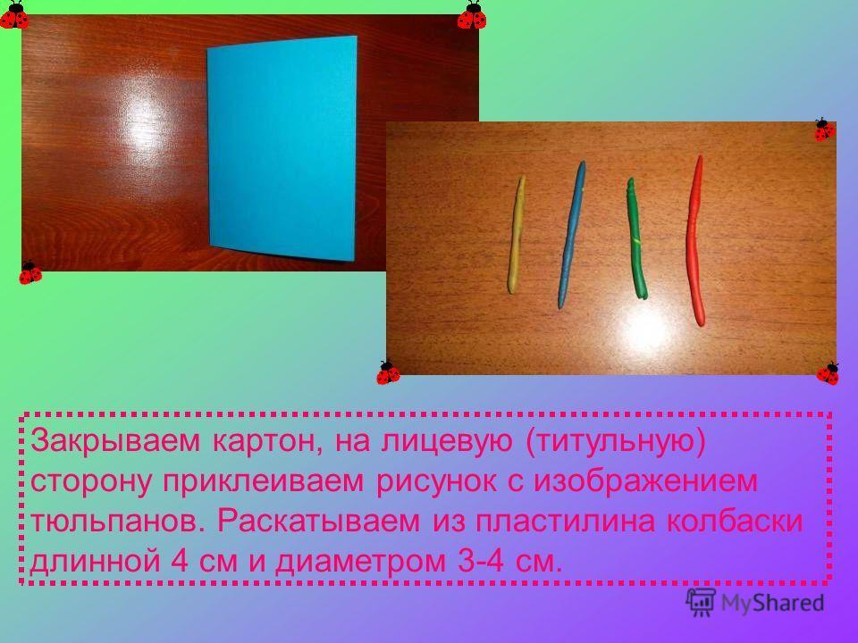 Закрываем картон, на лицевую (титульную) сторону приклеиваем рисунок с изображением тюльпанов. Раскатываем из пластилина колбаски длинной 4 см и диаметром 3-4 см.
