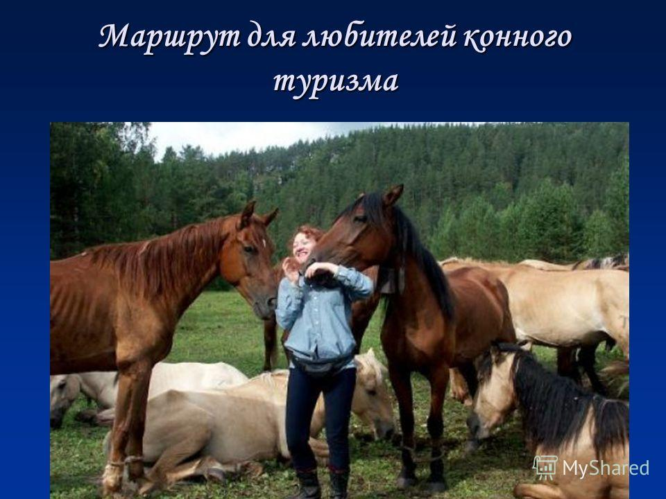 Маршрут для любителей конного туризма