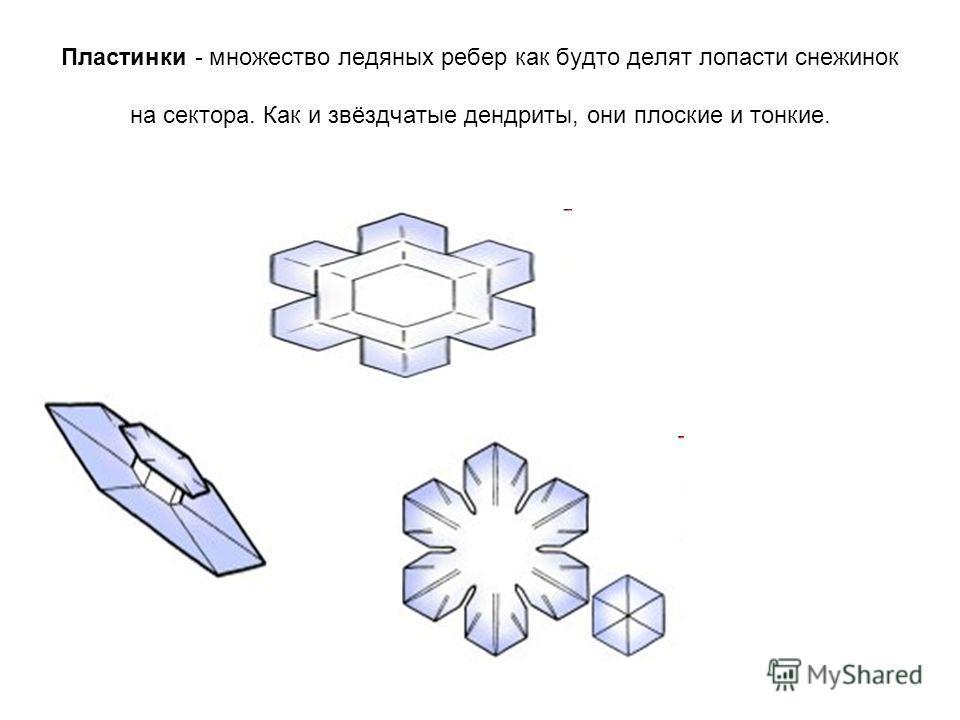 Пластинки - множество ледяных ребер как будто делят лопасти снежинок на сектора. Как и звёздчатые дендриты, они плоские и тонкие.