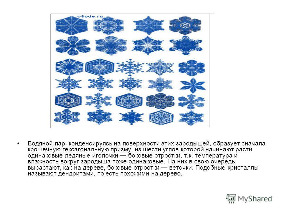 Водяной пар, конденсируясь на поверхности этих зародышей, образует сначала крошечную гексагональную призму, из шести углов которой начинают расти одинаковые ледяные иголочки боковые отростки, т.к. температура и влажность вокруг зародыша тоже одинаков