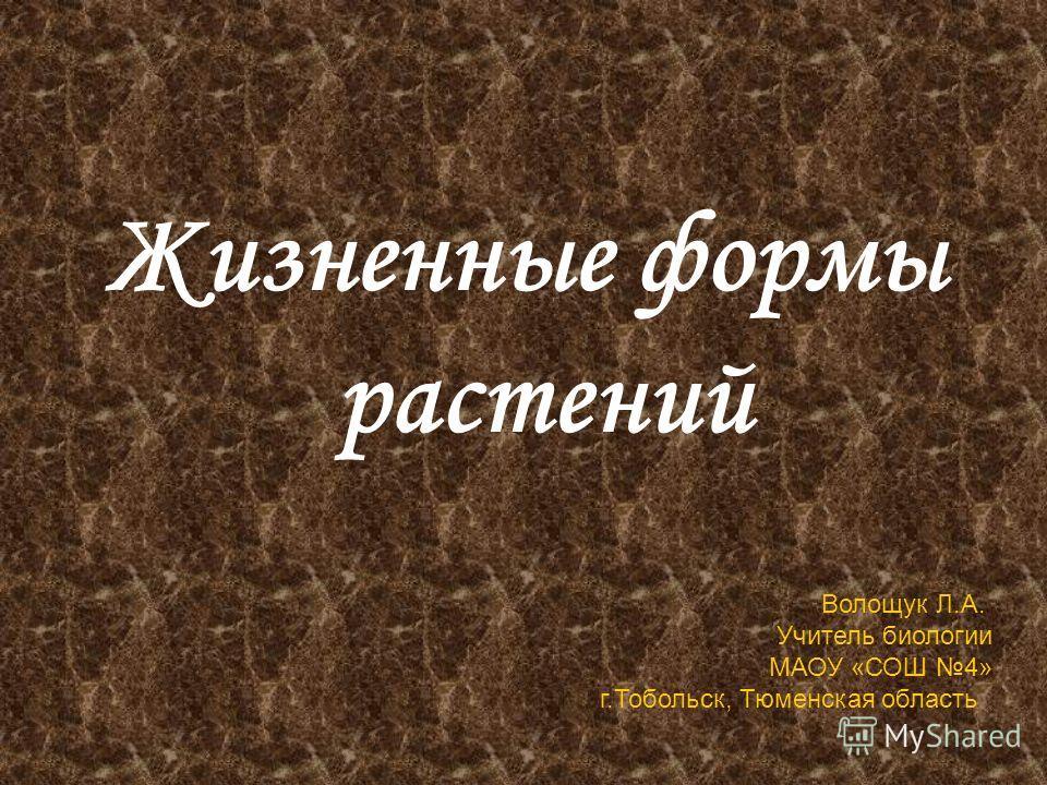 Жизненные формы растений Волощук Л.А. Учитель биологии МАОУ «СОШ 4» г.Тобольск, Тюменская область
