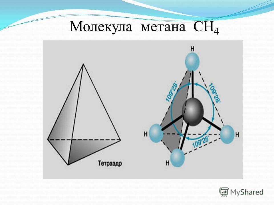 Молекулы ДНК (дезоксирибонуклеиновая кислота)