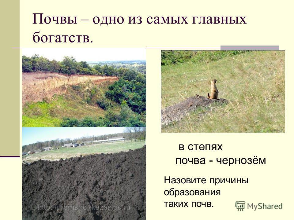 Почвы – одно из самых главных богатств. в степях почва - чернозём Назовите причины образования таких почв.
