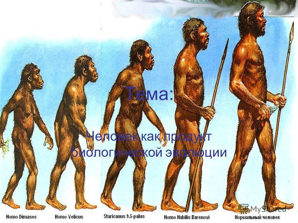 Тема: Человек как продукт биологической эволюции