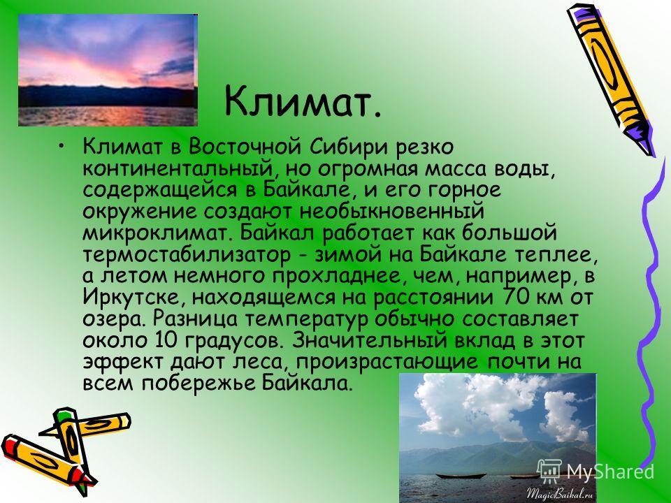 Климат. Климат в Восточной Сибири резко континентальный, но огромная масса воды, содержащейся в Байкале, и его горное окружение создают необыкновенный микроклимат. Байкал работает как большой термостабилизатор - зимой на Байкале теплее, а летом немно