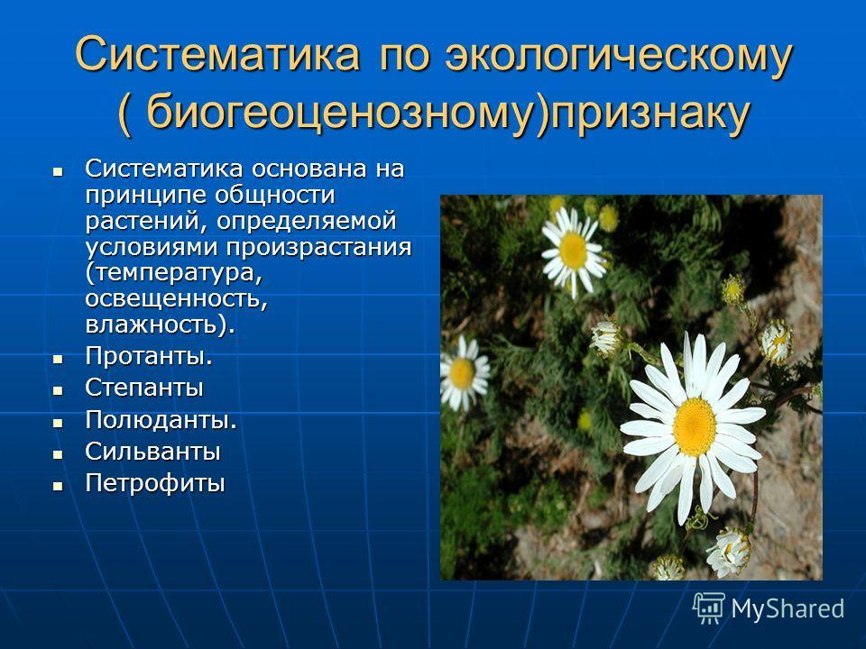 Систематика по экологическому ( биогеоценозному)признаку Систематика основана на принципе общности растений, определяемой условиями произрастания (температура, освещенность, влажность). Систематика основана на принципе общности растений, определяемой