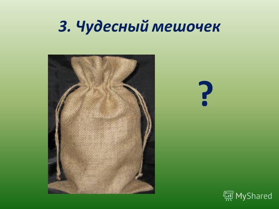 3. Чудесный мешочек ?