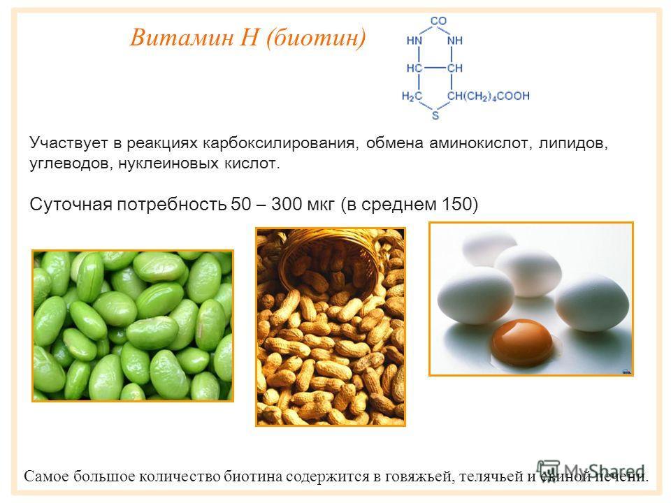 Витамин B 12 (цианокобаламин) Витамин B 12 - единственный водорастворимый витамин, способный аккумулироваться в организме, - он откладывается в печени, почках, легких и селезенке. Участвует в биосинтезе нуклеиновых кислот, л ецит ина. Витамин B 12 по