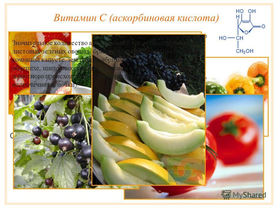 Так как химическая природа витаминов была открыта после установления их биологической роли, их условно обозначили буквами латинского алфавита (A, B, C, D и т. д.), что сохранилось и до нашего времени. В качестве единицы измерения витаминов пользуются
