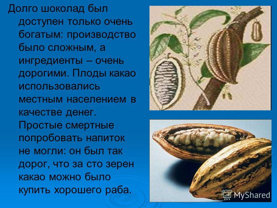 Долго шоколад был доступен только очень богатым: производство было сложным, а ингредиенты – очень дорогими. Плоды какао использовались местным населением в качестве денег. Простые смертные попробовать напиток не могли: он был так дорог, что за сто зе