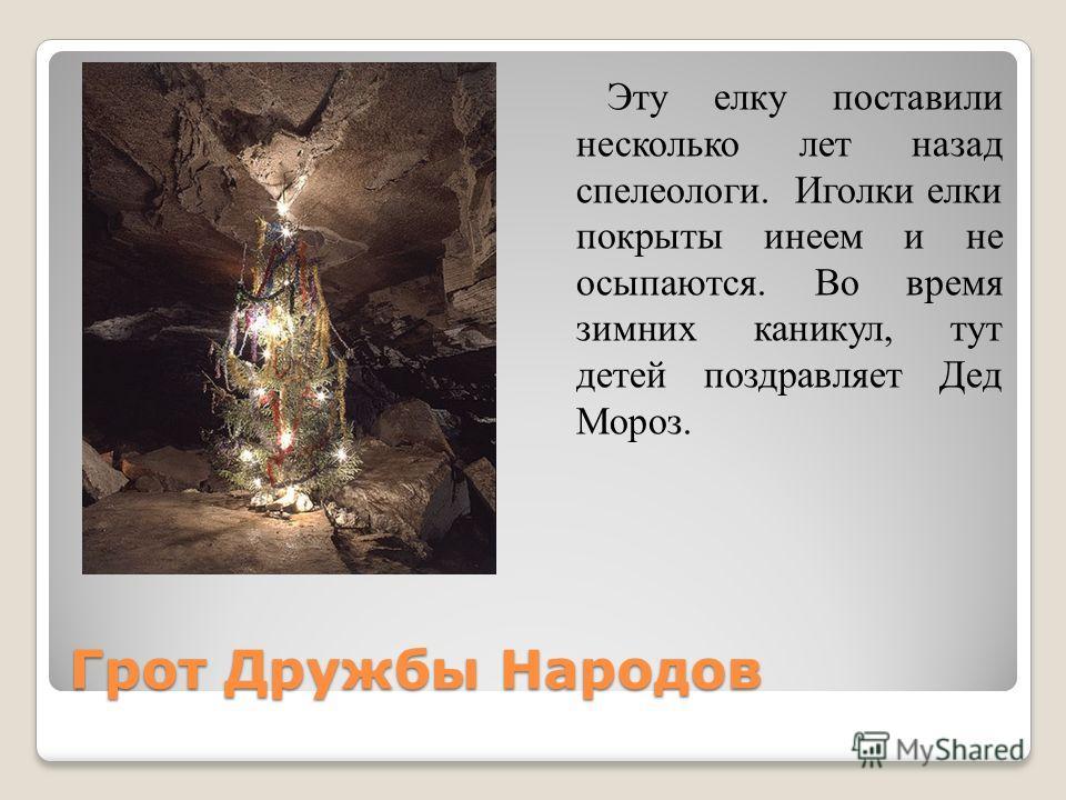 Грот Дружбы Народов Эту елку поставили несколько лет назад спелеологи. Иголки елки покрыты инеем и не осыпаются. Во время зимних каникул, тут детей поздравляет Дед Мороз.