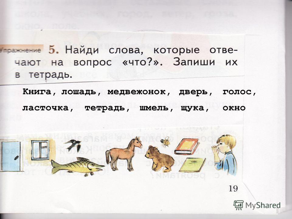 Книга, лошадь,медвежонок, дверь,голос, ласточка, тетрадь, шмель,щука, окно