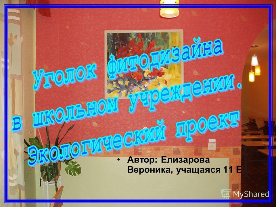Автор: Елизарова Вероника, учащаяся 11 Е