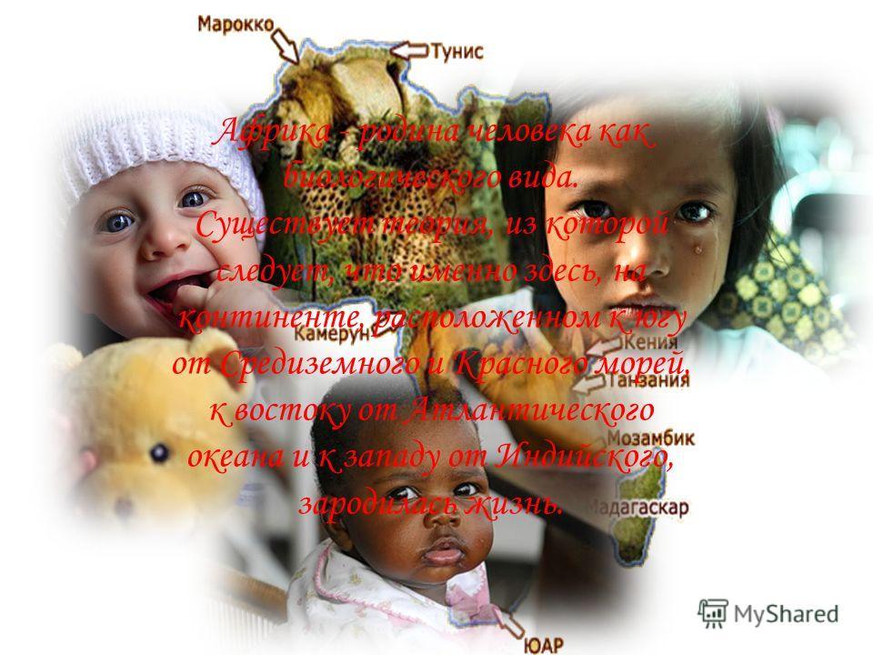 Африка - родина человека как биологического вида. Существует теория, из которой следует, что именно здесь, на континенте, расположенном к югу от Средиземного и Красного морей, к востоку от Атлантического океана и к западу от Индийского, зародилась жи