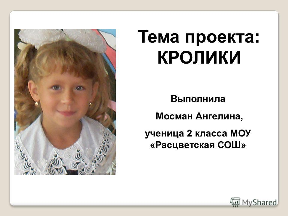 Тема проекта: КРОЛИКИ Выполнила Мосман Ангелина, ученица 2 класса МОУ «Расцветская СОШ»