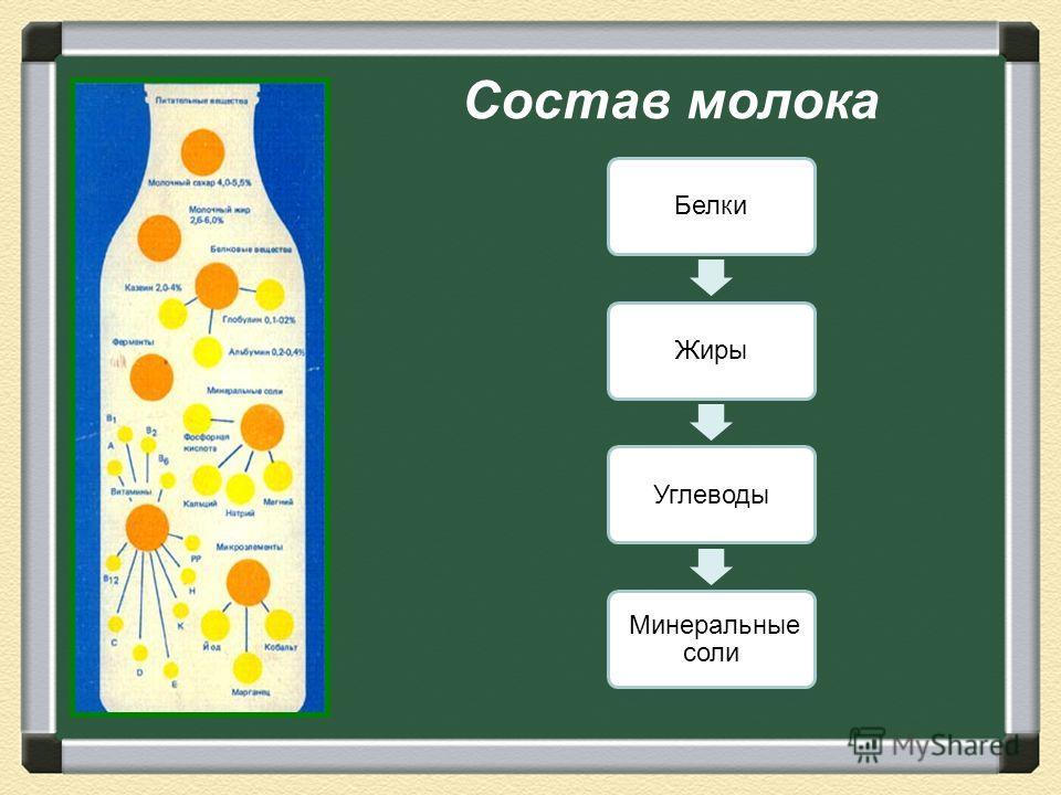 Состав молока БелкиЖирыУглеводы Минеральные соли