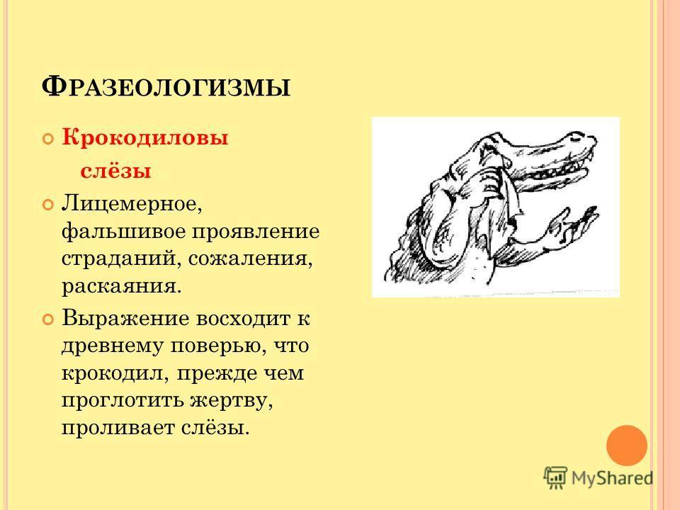Ф РАЗЕОЛОГИЗМЫ Крокодиловы слёзы Лицемерное, фальшивое проявление страданий, сожаления, раскаяния. Выражение восходит к древнему поверью, что крокодил, прежде чем проглотить жертву, проливает слёзы.