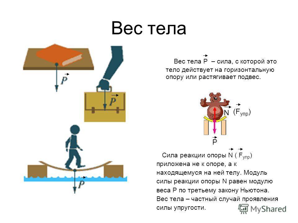 Вес тела Вес тела P – сила, с которой это тело действует на горизонтальную опору или растягивает подвес. Сила реакции опоры N ( F упр ) приложена не к опоре, а к находящемуся на ней телу. Модуль силы реакции опоры N равен модулю веса P по третьему за