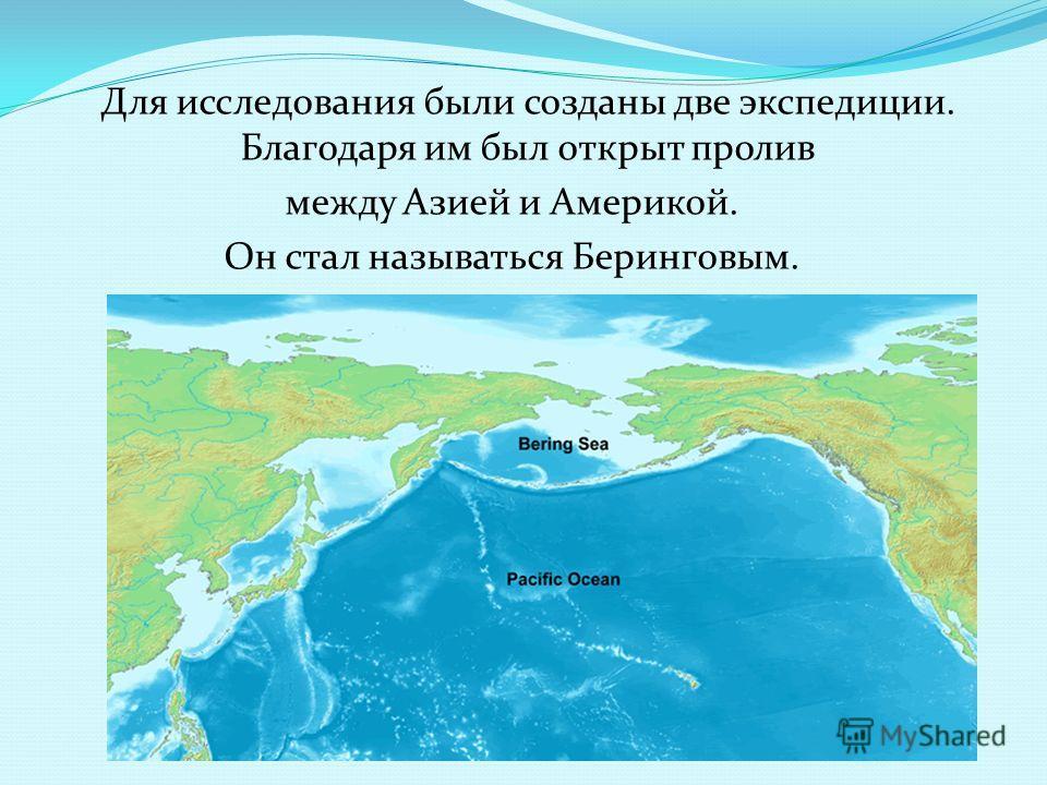 Для исследования были созданы две экспедиции. Благодаря им был открыт пролив между Азией и Америкой. Он стал называться Беринговым.