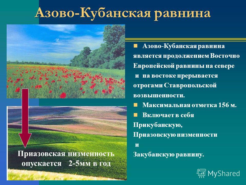 Азово-Кубанская равнина является продолжением Восточно Европейской равнины на севере и на востоке прерывается отрогами Ставропольской возвышенности. Максимальная отметка 156 м. Включает в себя Прикубанскую, Приазовскую низменности и Закубанскую равни