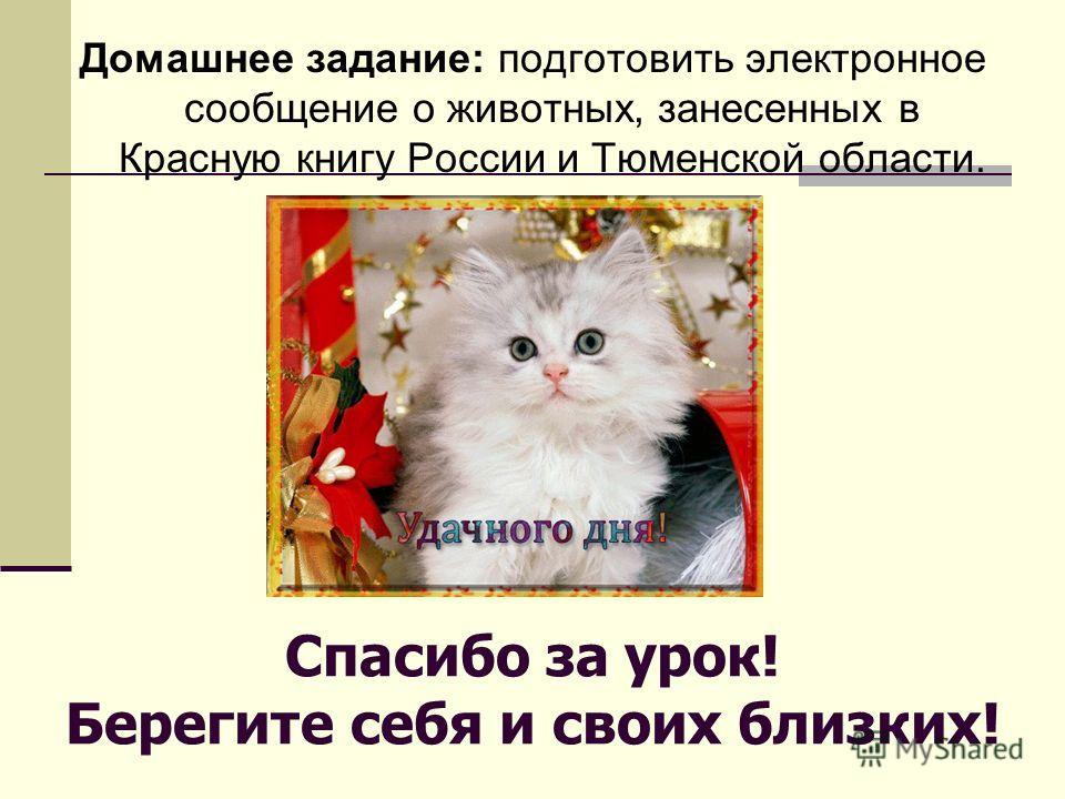 Спасибо за урок! Берегите себя и своих близких! Домашнее задание: подготовить электронное сообщение о животных, занесенных в Красную книгу России и Тюменской области.