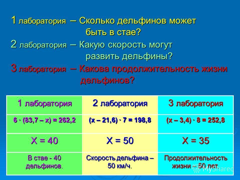 1 лаборатория – Сколько дельфинов может быть в стае? 2 лаборатория – Какую скорость могут развить дельфины? 3 лаборатория – Какова продолжительность жизни дельфинов? 1 лаборатория 2 лаборатория 3 лаборатория 6 · (83,7 – х) = 262,2 (х – 21,6) · 7 = 19