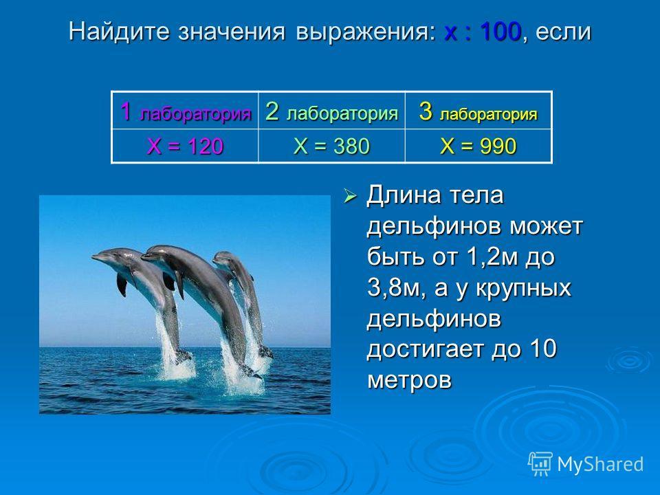 Найдите значения выражения: х : 100, если Длина тела дельфинов может быть от 1,2м до 3,8м, а у крупных дельфинов достигает до 10 метров 1 лаборатория 2 лаборатория 3 лаборатория Х = 120 Х = 380 Х = 990