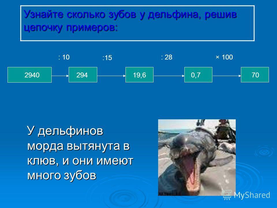У дельфинов морда вытянута в клюв, и они имеют много зубов У дельфинов морда вытянута в клюв, и они имеют много зубов Узнайте сколько зубов у дельфина, решив цепочку примеров: : 10: 28× 100 700,719,6294 :15 2940