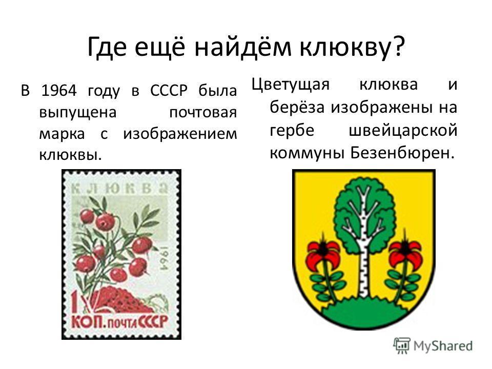 Где ещё найдём клюкву? В 1964 году в СССР была выпущена почтовая марка с изображением клюквы. Цветущая клюква и берёза изображены на гербе швейцарской коммуны Безенбюрен.