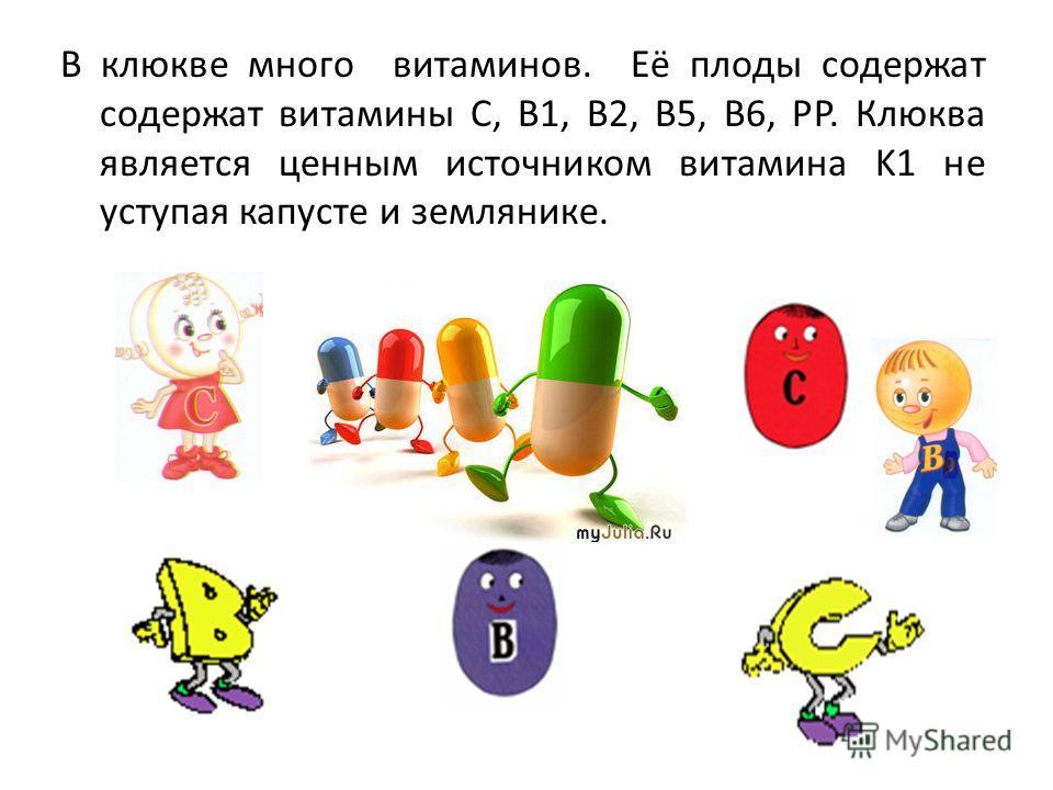 В клюкве много витаминов. Её плоды содержат содержат витамины С, B1, B2, B5, B6, PP. Клюква является ценным источником витамина K1 не уступая капусте и землянике.